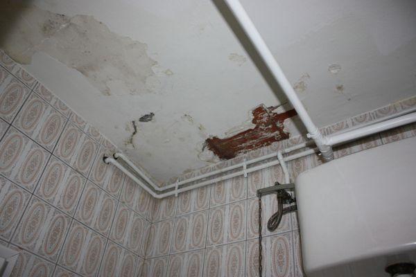 Arreglar desconchado techo baño