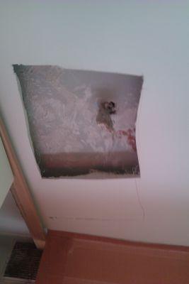 Presupuesto para urge tapar agujero en techo en madrid for Tapar agujero techo escayola bricomania