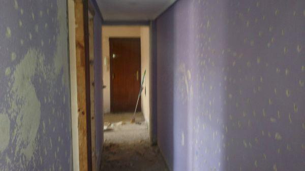 Presupuesto para quitar gotele y pintar piso 70 00 metros for Presupuesto pintar piso